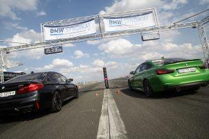 The Race Syndikat Asphaltfieber